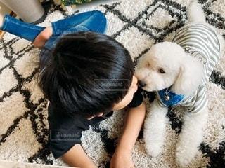 男の子と犬の写真・画像素材[3318829]