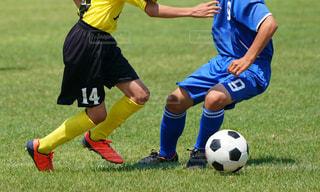 サッカーの写真・画像素材[3364372]