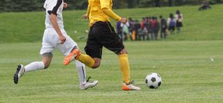 サッカーの写真・画像素材[3370911]