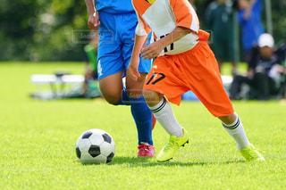 野原でサッカーをしている少年の写真・画像素材[3488239]