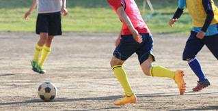サッカーの練習の写真・画像素材[3560007]