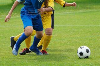 サッカーの写真・画像素材[3925109]