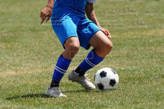 サッカーの写真・画像素材[4627582]