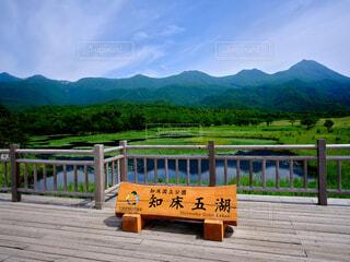 知床五湖の写真・画像素材[4771132]