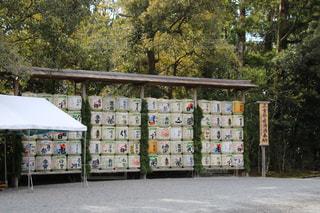 トラックの荷台に乗っている人々 のグループの写真・画像素材[972514]