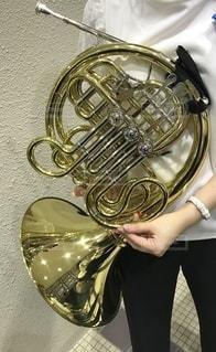 Horn playerの写真・画像素材[3302824]