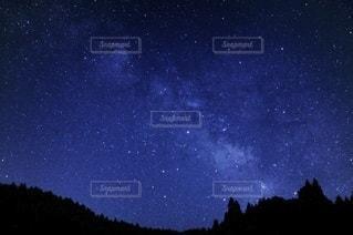 星空と森のシルエットの写真・画像素材[3393201]