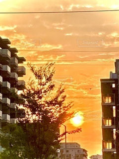 日没時の都市の眺めの写真・画像素材[3326527]