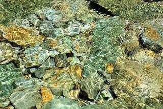 透明に澄んだ川が太陽の光で揺らめいているの写真・画像素材[3556913]