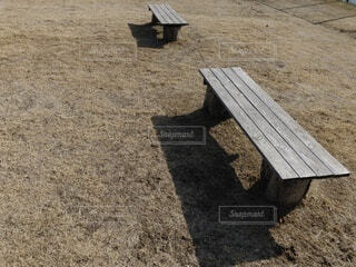 昼下がりの公園のベンチの写真・画像素材[4151924]