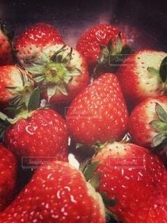 収穫したイチゴ・レトロ調の写真・画像素材[4176061]
