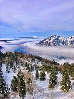 雲海を纏った雪山の写真・画像素材[3307988]