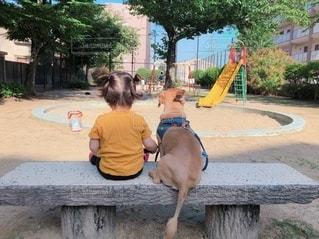 公園の眺めの写真・画像素材[3316087]