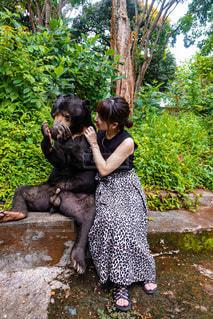 熊との触れ合いの写真・画像素材[3316143]