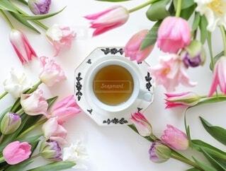 花のクローズアップの写真・画像素材[4120322]