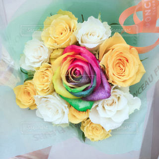 花の写真・画像素材[139753]