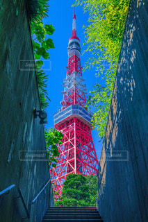 Tokyo towerの写真・画像素材[3333284]