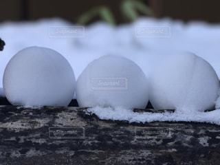自然,風景,空,冬,雪,ボール,玉,雪合戦