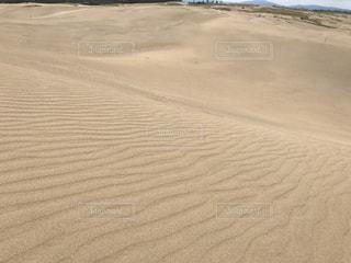 砂浜のビーチの写真・画像素材[747404]