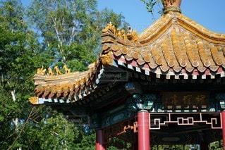 中国の写真・画像素材[3439528]