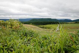 田舎の風景の写真・画像素材[3930924]