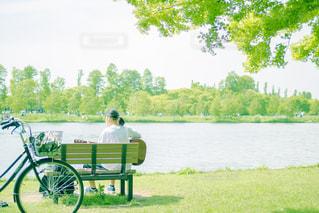 公園の写真・画像素材[651549]