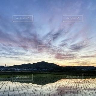 日の出前の静かな田園風景の写真・画像素材[3356794]
