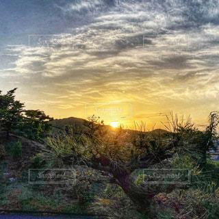 沈みゆく夕陽の写真・画像素材[3361642]