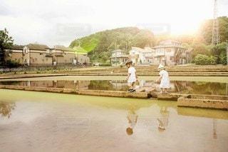 田んぼ散歩の写真・画像素材[3353902]