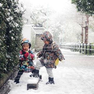 雪の写真・画像素材[3353911]