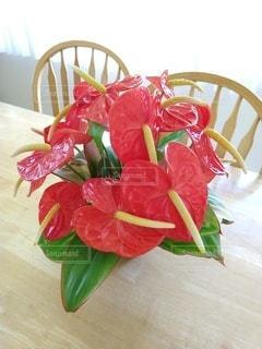 真っ赤な花束の写真・画像素材[3361711]