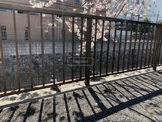 金属製のフェンスからの影の写真・画像素材[3364134]