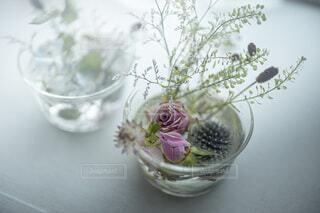 水に花を浮かべての写真・画像素材[3645443]