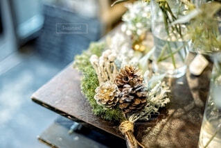 ドライフラワー、植物の写真の写真・画像素材[3650388]