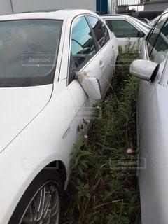 事故車の外車の写真・画像素材[3481519]