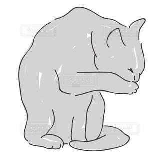 猫の写真・画像素材[141203]