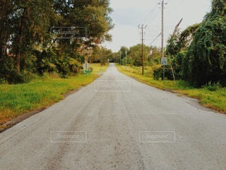 外国の田舎道の写真・画像素材[3375162]