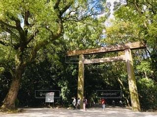 熱田神宮の写真・画像素材[3561290]