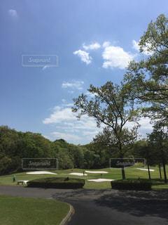 ゴルフの写真・画像素材[142048]