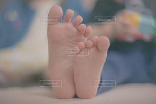 足の写真・画像素材[3455482]