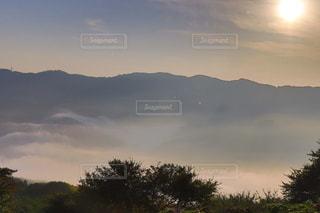 秩父の雲海の写真・画像素材[3381305]
