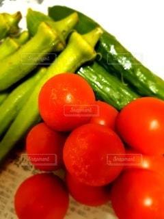 トマト オクラ きゅうりの写真・画像素材[3398560]