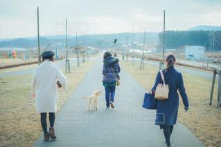 お散歩の写真・画像素材[4043607]