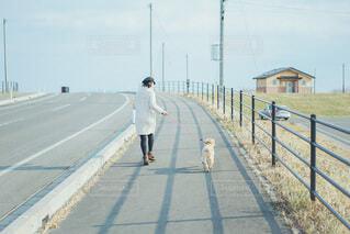 お散歩の写真・画像素材[4043608]