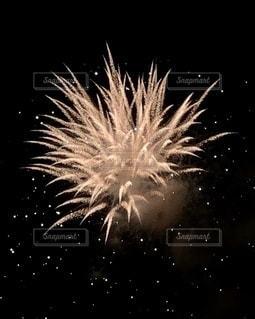 空の花火の写真・画像素材[3443877]