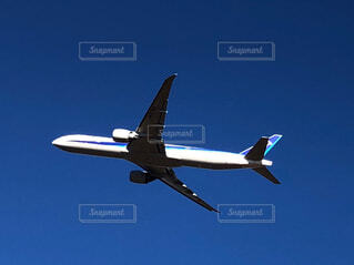 青い空を飛んでいる大型旅客機の写真・画像素材[4319895]