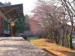 背景に木がある電車の線路上の電車の写真・画像素材[3480860]