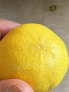 果物を持つ手の写真・画像素材[4326651]