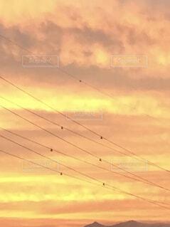 空の雲の群の写真・画像素材[4330384]