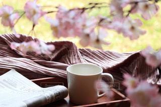 カップと桜の写真・画像素材[4298982]